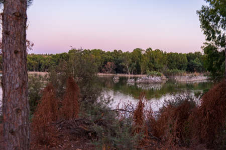Athalassa Lake in Cyprus with beautiful reflections of the sky, trees and birds late on a beautiful autumn afternoon.