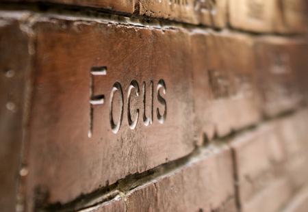 Focus Imagens - 30650345
