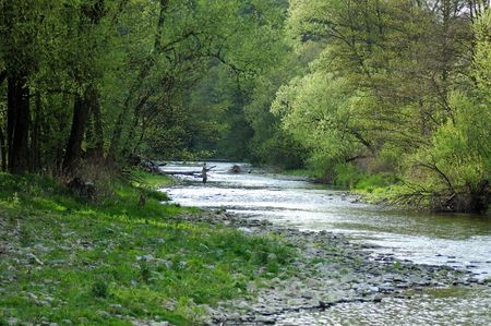 Fly fishing on the river Stock Photo - 1157800