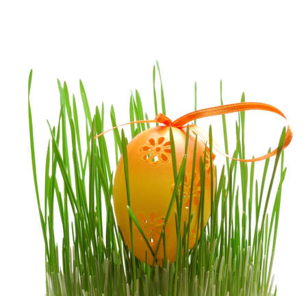 Easter eggs on grass isolated on white background photo