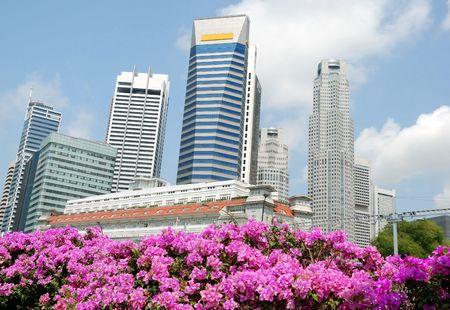Singapore skyline, view from the bridge