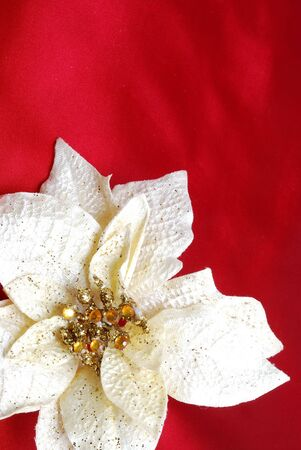sateen: Christmas decoration on red sateen with white flower
