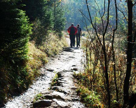 parejas caminando: Amigos paseo por el bosque