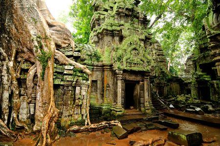 ta: Angkor Wat - Ta Prohm temple, Cambodia  Stock Photo
