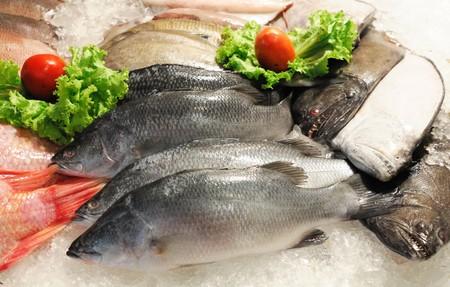 fisch eis: Frischer Fisch auf dem Fischmarkt