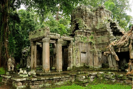 angkor: Angkor Wat - Ta Prohm temple, Cambodia