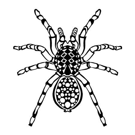 tatouage: Croquis d'araign�e stylis�e pour Avatar