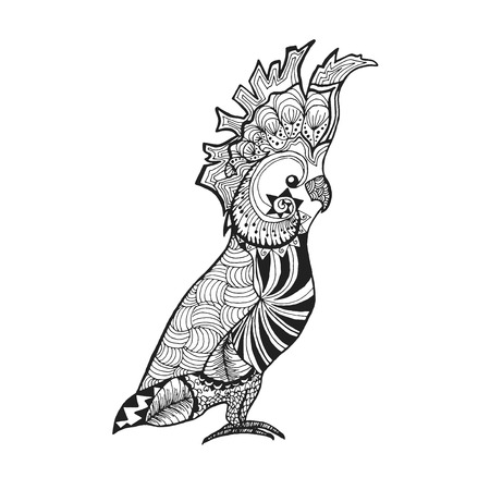 Zentangle stylized cockatoo parrot. Birds. Black white hand drawn doodle. Ethnic patterned vector illustration. African, indian, totem tatoo design. Sketch for tattoo, poster, print or t-shirt.