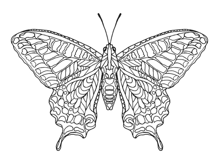 Zentangle stylized butterfly. Black white hand drawn doodle animal. Ethnic patterned vector illustration. African, indian, totem tribal design. Sketch for coloring page, tattoo, poster, print, t-shirt Stok Fotoğraf - 46777620