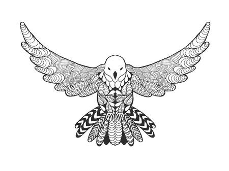 drawing dove: Pigeon bird