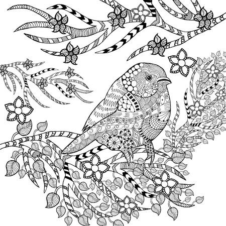 dibujos para colorear: Pájaro tropical Vectores
