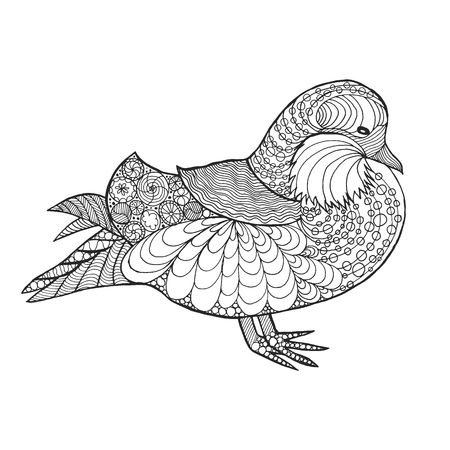pato: mandarina duck Vectores