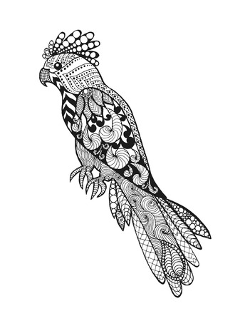 indian animal: parrot Illustration