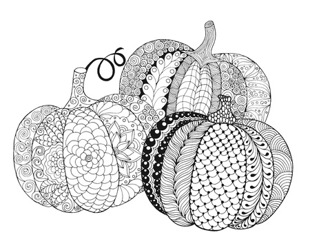 autumn colouring: Zentangle stylized pumpkins. Black white hand drawn vector illustration. Traditional symbol of Thanksgiving, Halloween, autumn. Sketch for colouring page, decoration, poster, print