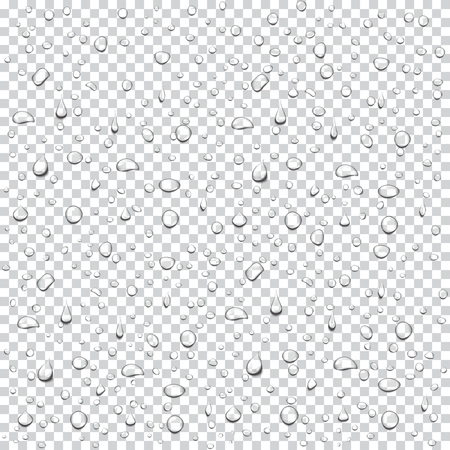 Transparent drops background. Realistic water rain drops vector. Condensed droplets. Illustration for your design and business.