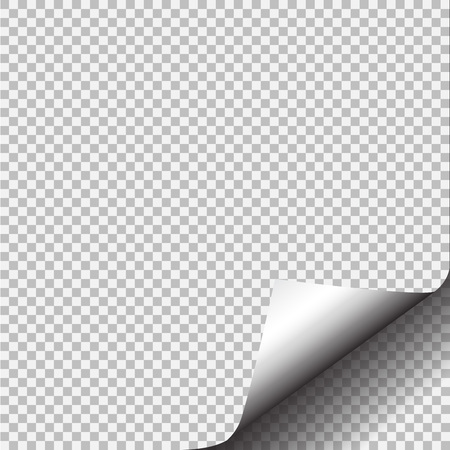 Page curl with shadow on blank sheet of paper. Stock Photo
