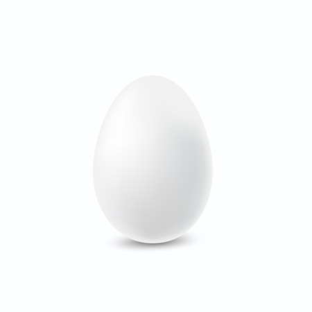 Realistic white egg.