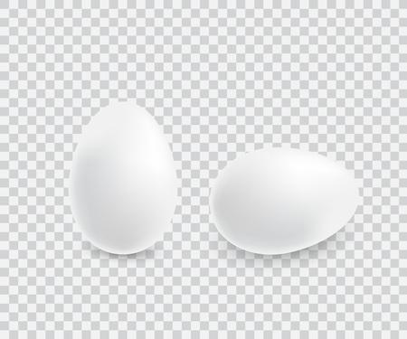 Two realistic white eggs. Archivio Fotografico - 110603981