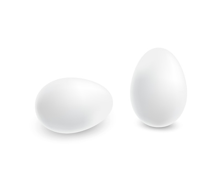 Two realistic white eggs. Stock Vector - 110603984