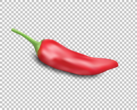 Red hot natural chili pepper pod realistic image with shadow illustration. Design for grocery, culinary products, seasoning and spice package, recipe web site decoration, cooking book. Çizim