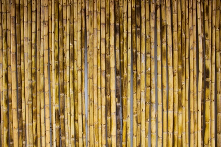 Bamboo stick background Stock Photo