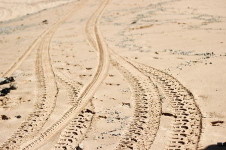 Vehicle trace on the sand