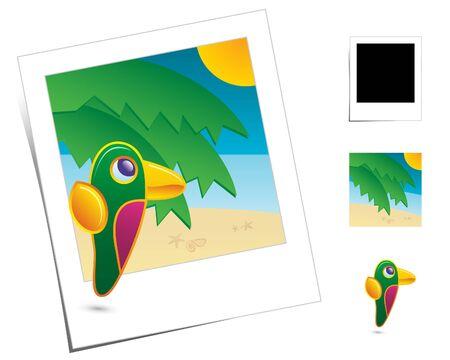 brink: Animal Scenes  Holidays Parrot