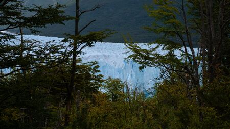 Ice wall of a glacier with some pieces of ice in the water in front of a forest. Perito Moreno Glacier in Argentina Imagens