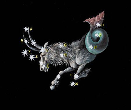 capricorn: Capricorn zodiac icon