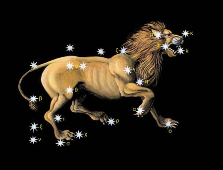 constellations: Ic�ne de zodiac Leo  Banque d'images