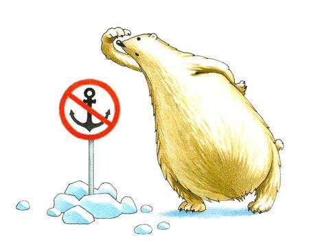 Polar bear_1