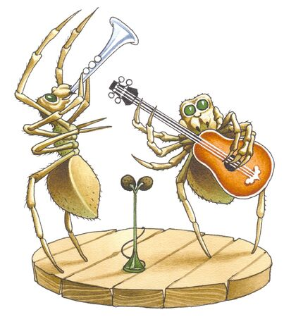The duet of spiders blows the trumpet also to a guitar.  Stock Photo