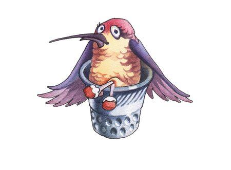 teeny: hummingbird_3  Stock Photo