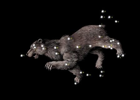 constelacion: Constelaci�n el gran oso (Osa Mayor)