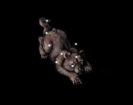 Constellation The Little Bear (Ursa Minor)