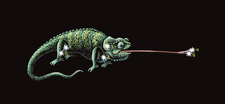 Constellation The Chameleon (Chamaeleon)  Stock Photo