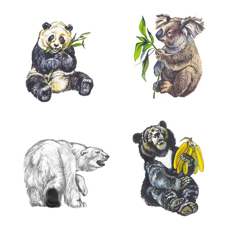 Bears Stock Photo