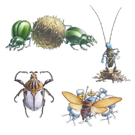käfer: K�fer