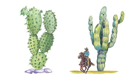 Opuntia and Saguaro