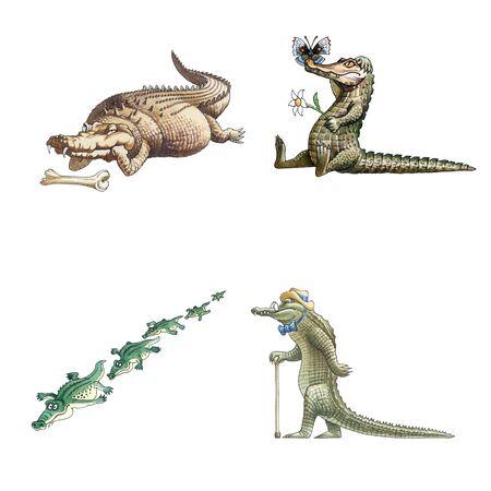 Сrocodile photo
