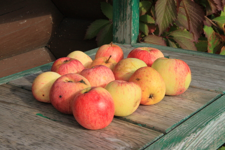 Apples on wooden bench