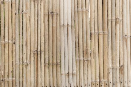 Machte die Wand Bambus Standard-Bild - 29880514