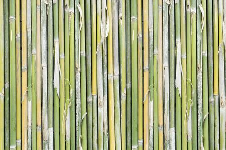 Bambus Hintergrund Standard-Bild - 32233769