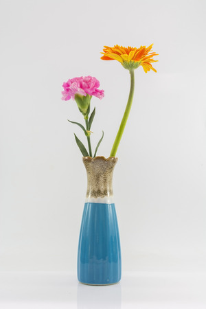 Vase und Blume zu isolieren, auf dem weißen Hintergrund. Standard-Bild - 48217439