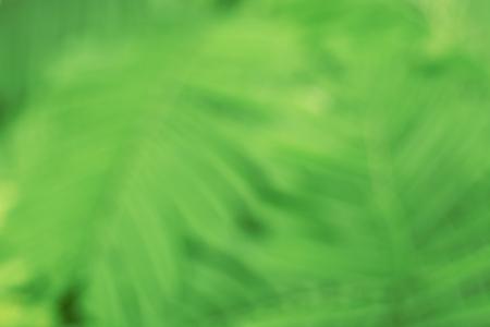 Grünem Hintergrund und abstrack Hintergrund Standard-Bild - 48217440