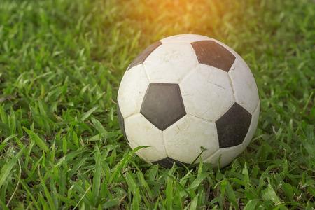 Fußball auf dem Gier Gras. Standard-Bild - 49117343