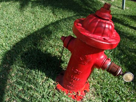 to ensure: Red fire hydrant in the grass near the beach