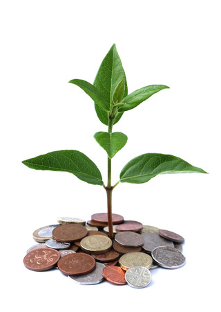 growing money: Growth coming from a bunch of coins