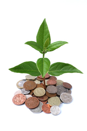 foliage tree: Growth coming from a bunch of coins