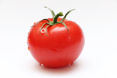 white background: Tomato